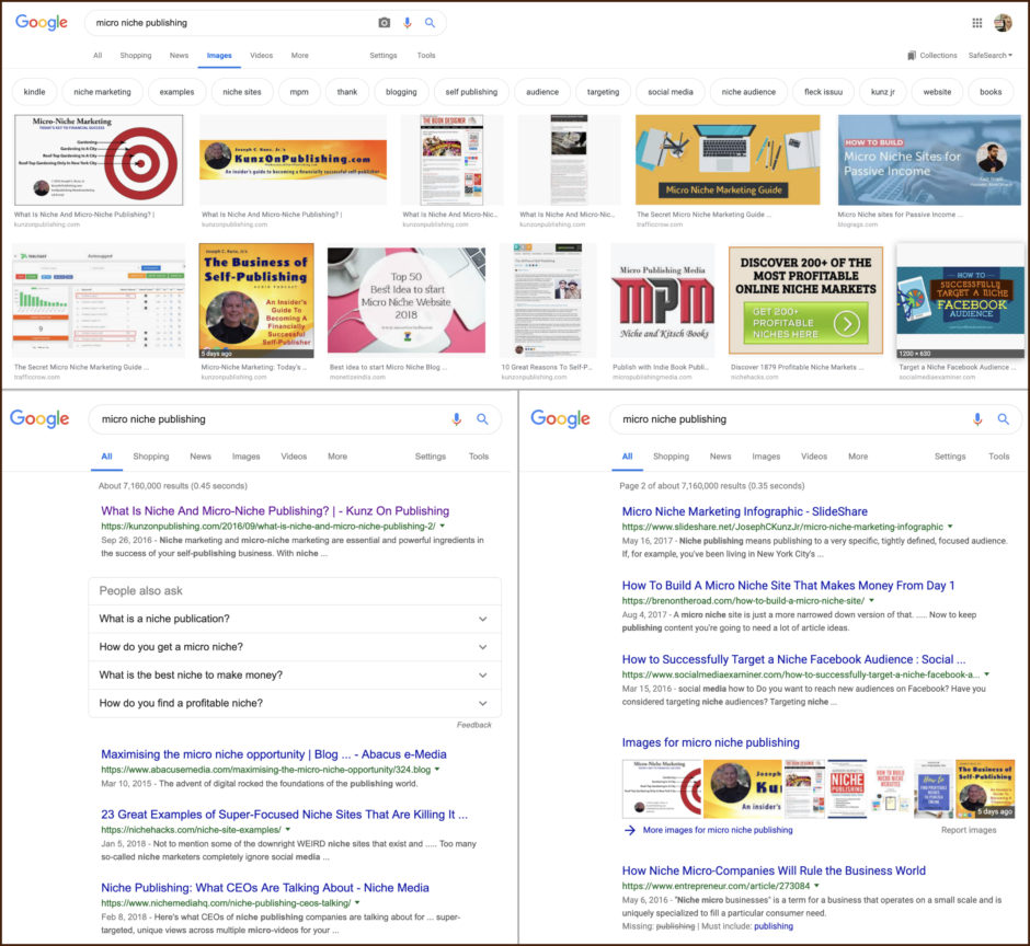 Google Search Results for Micro-Niche Publishing