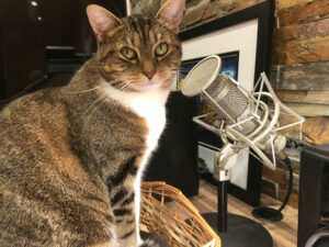 My podcasting assistant is always listening to me, and very quick to give me practical advice.